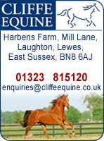 Cliffe Veterinary Group - Equine Clinic