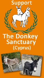 The Donkey Sanctuary - Cyprus
