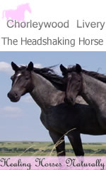 The Headshaking Horse