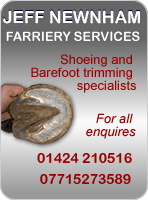 Jeffery Newnham - Farriery Services - Shoeing and Barefoot Trimming specialists