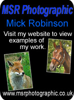 MSR Photographics - Mick Robinson