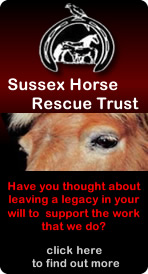 Sussex Horse Rescue Trust