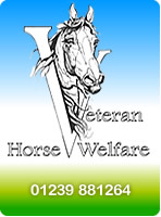 Veteran Horse Welfare