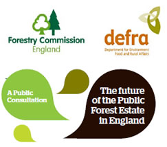 New direction for England's public forest estate
