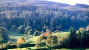 Protest over Grizedale Forest sell-off