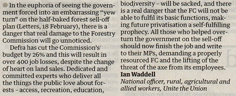 When the rot set in at the Forestry Commission