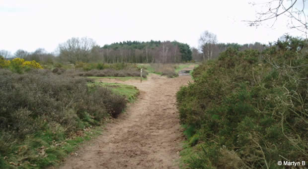 Hartlebury Common - Fight against fencing continues