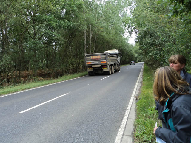 and the sightline with the lorry passing they refuse to cut back for us.