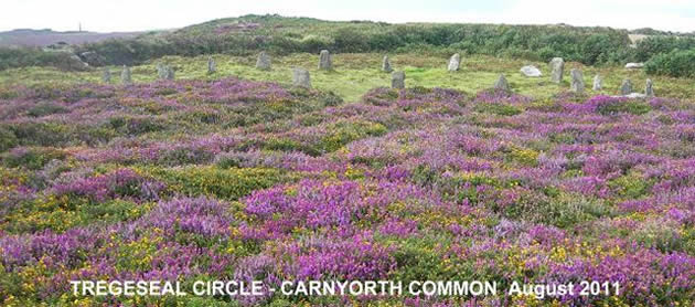 SAVE PENWITH MOORS