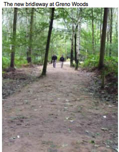 Opportunities to explore Greno Woods