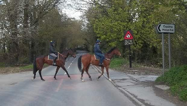Special £20,000 horse crossing installed TO HELP RIDERS CROSS FAST BUSY ROAD